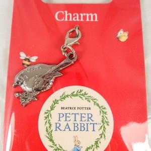 Robin Charm